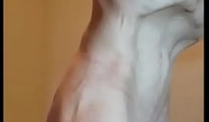Man takes a 20 inch Grown dildo in his guts. Stomach bulge together with all!